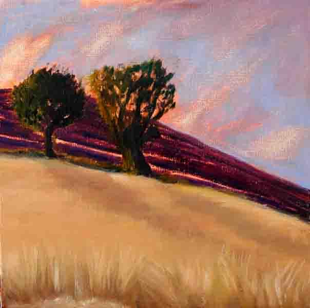 Wheatfield in Evening Light #20