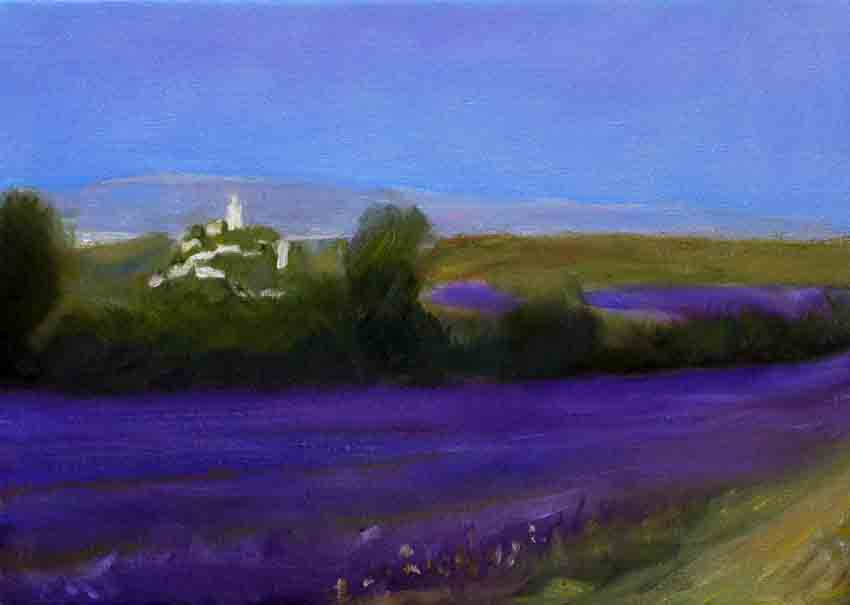 Lavender Field near the Village of Clansayes #15