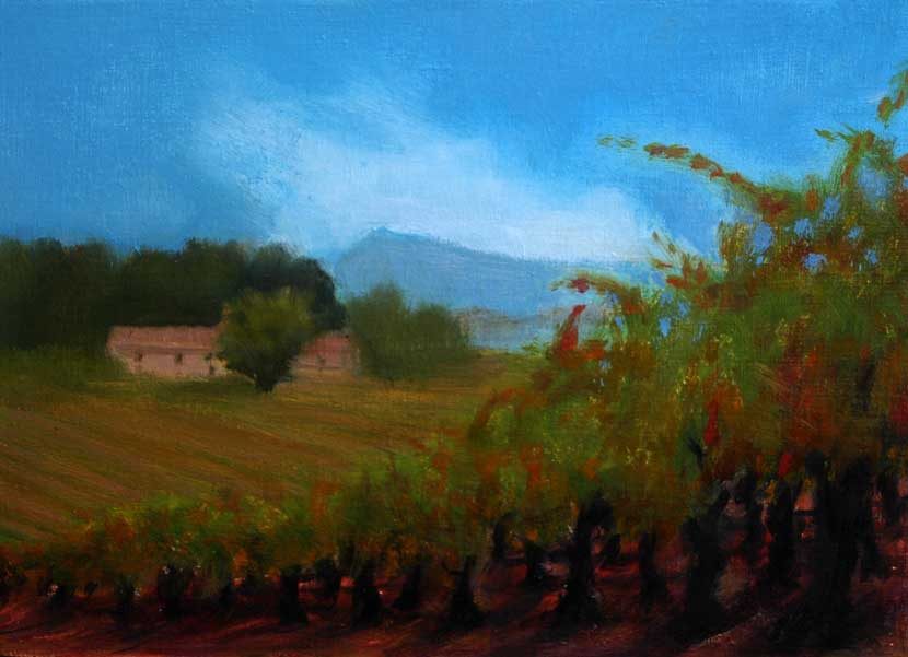 Farmhouse in vineyards with evening light