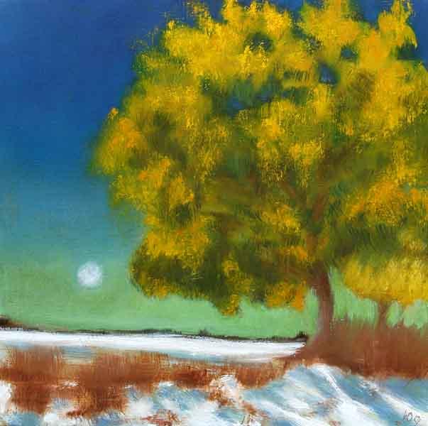 Mimosa tree moonlight and snow