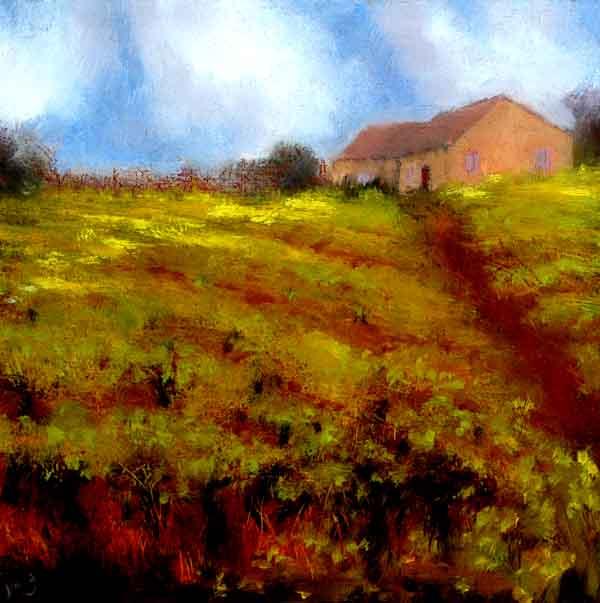 Spring Vines, Suze, Provence #125