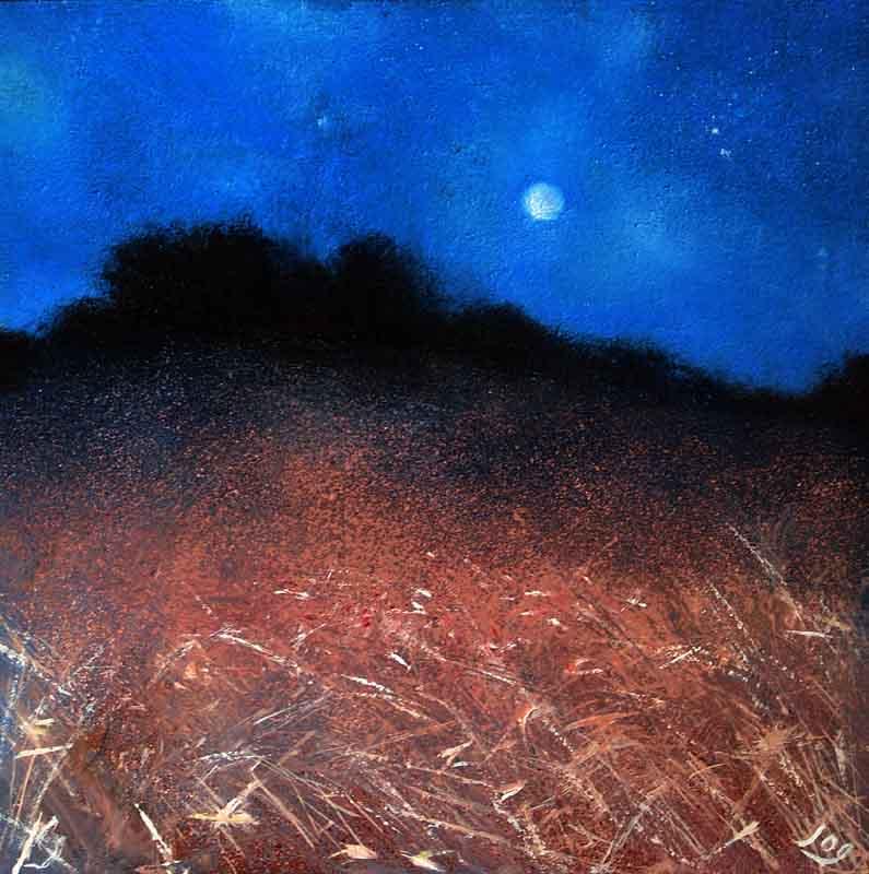 Moonlight, Provence, grasses